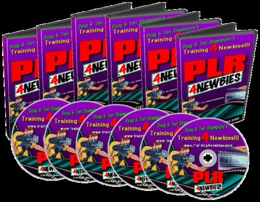Product picture PLR For Newbies Video Series - Internet Marketing Made Easy